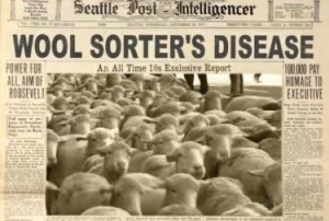wool-srters